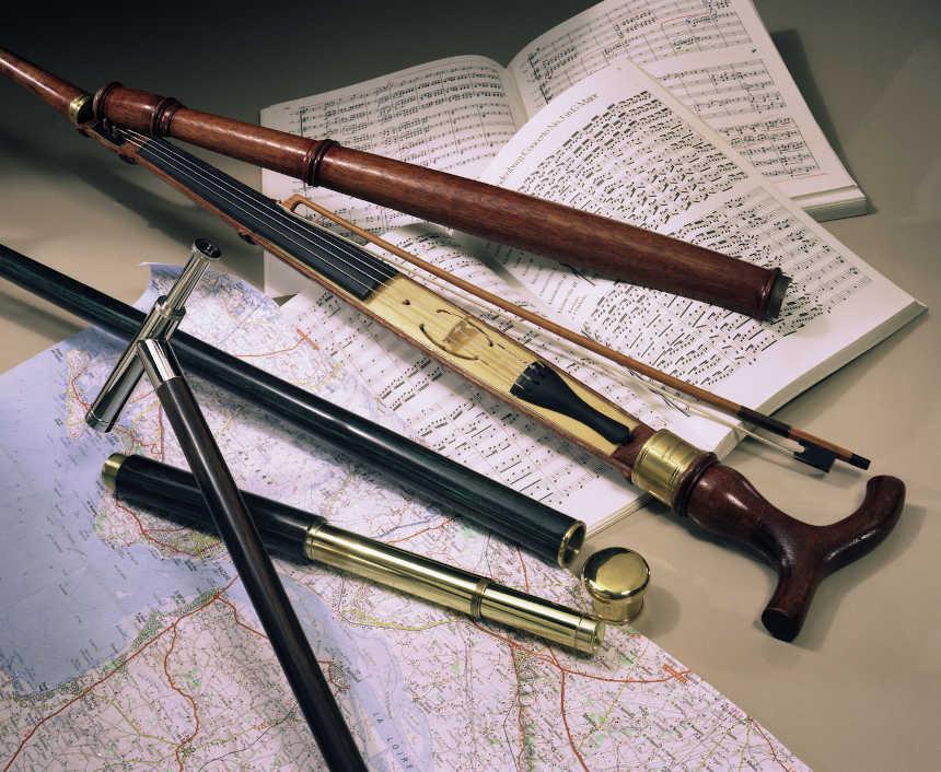 Canne longue vue et canne violon